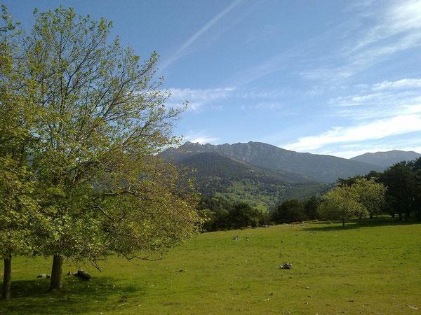 Praderas del valle; al fondo, Siete Picos