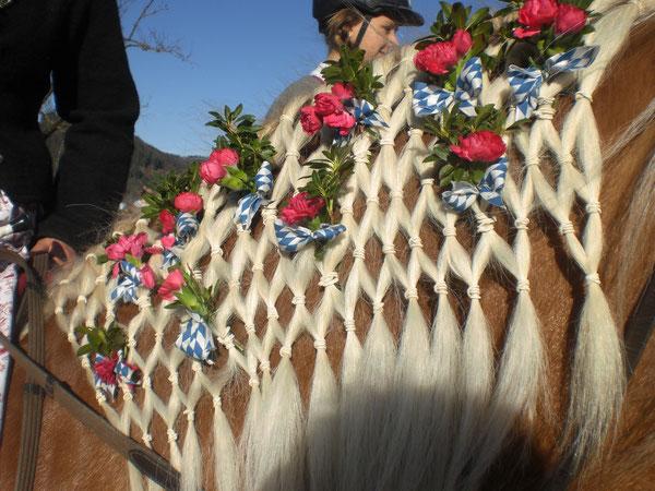 Ein festlich geschmücktes Ross ist der Stolz jeden Reiters.