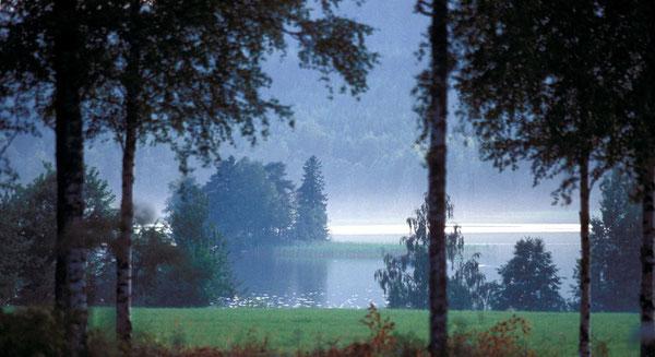 Seeblick See Seelage Insel