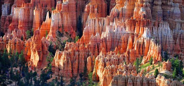 Brice Canyon / Utah