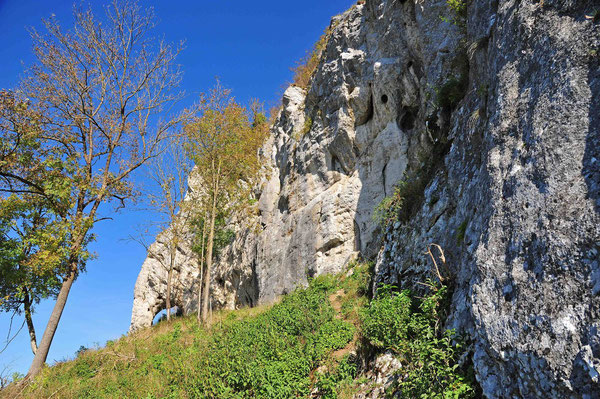 Die Südwest-Seite des Burgfels.