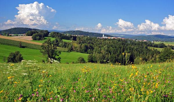 Einfach nur schön - der Bayerische Wald!