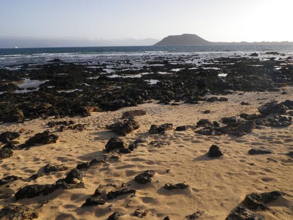 Coralejo - Côte nord de Fuerteventura - Canaries - Atlantique - ©FredG