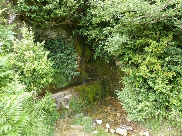 La Fontaine de l'Abense, joyau se cachant sous une voute de buis.
