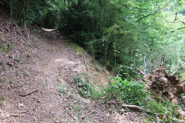 Trou dans l'assiette du Chemin de l'Ardoisière datant de 2009 (avant Xynthia). Restauration du passage à réaliser avec substrat terre et rocher.