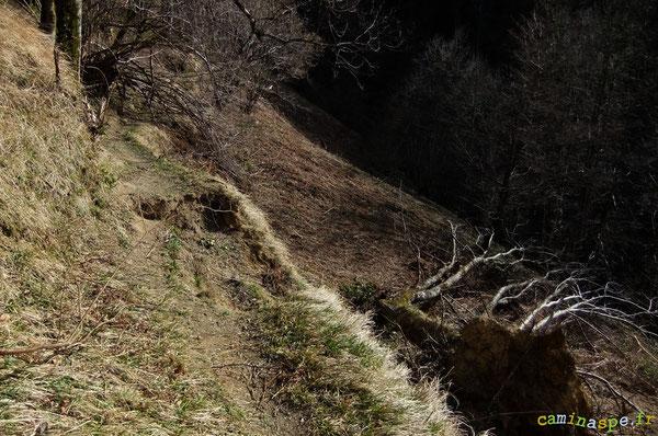 Trou dans l'assiette du Chemin de Sarité datant de 2009 (avant Xynthia). Restauration du passage à réaliser avec substrat terre.