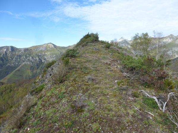À l'approche du Sommet de Tacha, belvédère situé au milieu des montagnes d'Aydius.