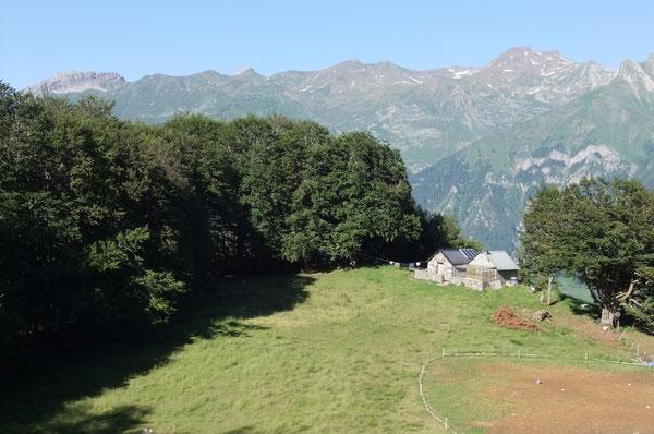 La Cabane d'Udapet-de-Bas est bâtie sur le rebord d'un plateau herbeux en lisière du bois.