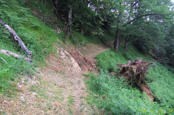 Trou dans l'assiette du Chemin des Jaupins datant de 2009 (avant Xynthia). Restauration du passage à réaliser avec substrat rocher.