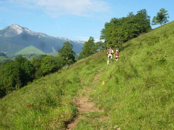 À la descente du Layens, avant de rejoindre le Chemin des Serres.