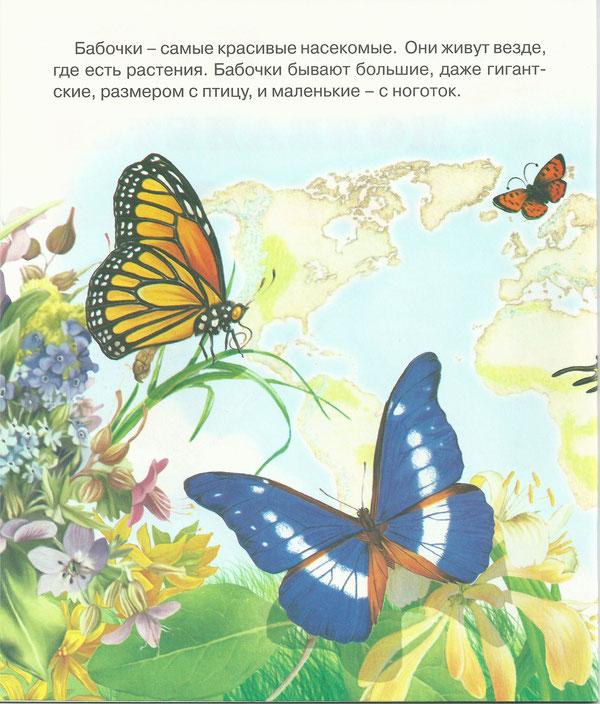 Стихи про бабочек в картинках