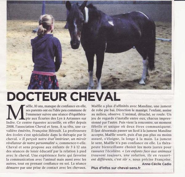 Cheval et Sens : Thérapie et psychothérapie avec le cheval
