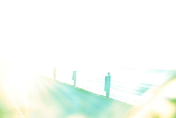 まぶしい太陽の光の中で波を探す。