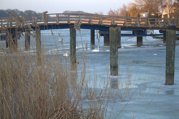 Brücke über die Peene in Wolgast mit Schwänen.