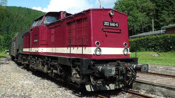 202 646-6 (ex. DR 110 646-7) in Katzhütte (14. August 2010)