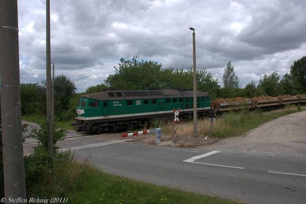 Beerwalde (23. Juli 2011)