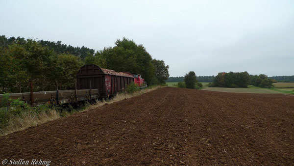 Zwischen Lonnershof und Frensdorf (7. Oktober 2010)