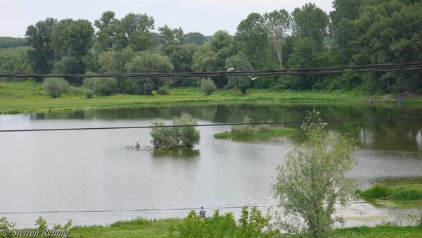 .... und weiter mit Schrittgeschwindigkeit und Ausblick in wunderschöne Donauauen nach Bulgarien