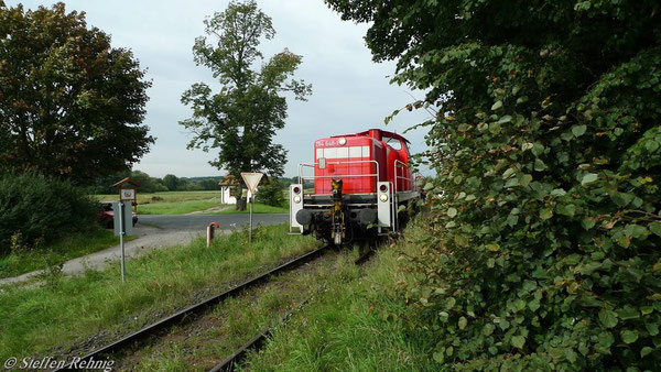 Elsendorf (7. September 2010)