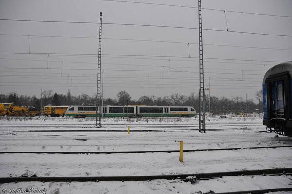 Berlin Grunewald (4. Januar 2011)