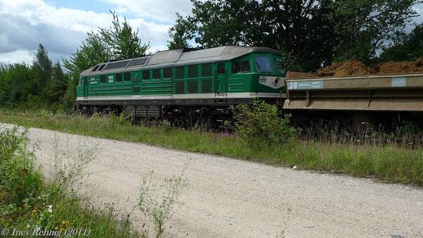 V 300 003 in Beerwalde (23. Juli 2011)