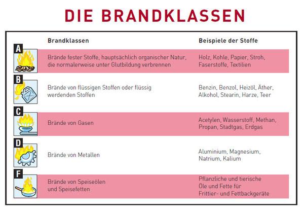 download Das biokybernetische Modell: