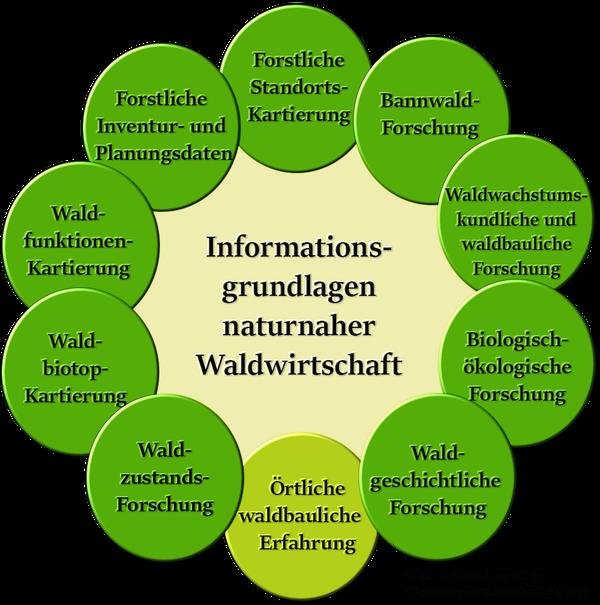 Grafik über die Informationsgrundlagen naturnaher Waldwirtschaft