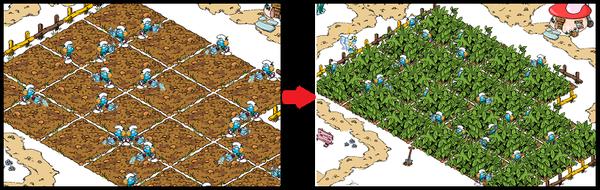 左が種を植えて水やりをしている様子。 しばらくすると右側みたいに作物が育ってくる。