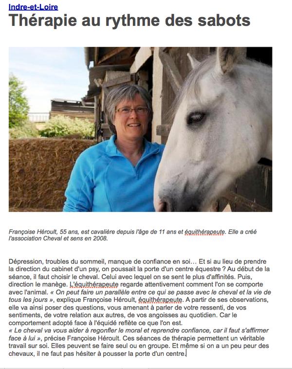 Cheval et Sens : psychothérapie et Développement Personnel avec le cheval