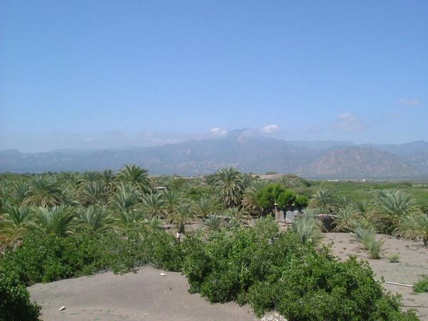 AMBABO 2006