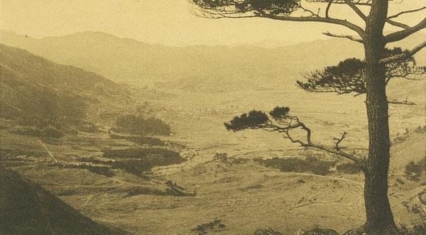 日野俊子が生まれた戦前の由布院の風景。由布山からの撮影と思われる。(戦前絵葉書所収)
