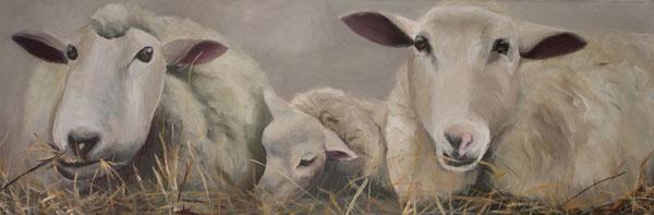 Sheeps Acryl auf Leinwand 40x120