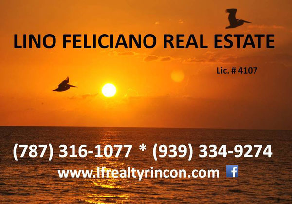 rincon, real estate, property, lina feliciano