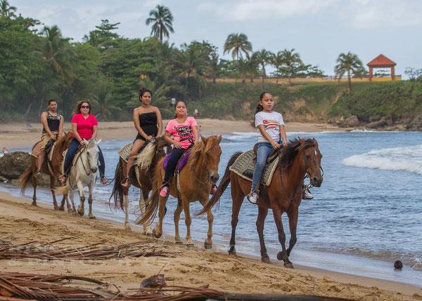 rincon, horseback, riding, beach, trails, pintos r us