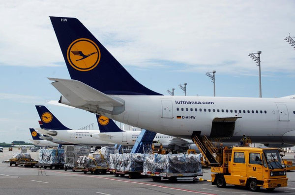Lufthansa is MUC's main cargo contributor  -  courtesy operator