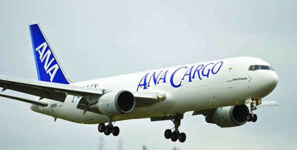 ANA may add more converted B767 freighters to its fleet  -  company courtesy.