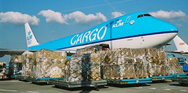 """Van Stekelenburg: """"At Schiphol we first look at KLM."""""""
