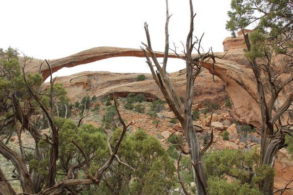 Foto Landscape Arch