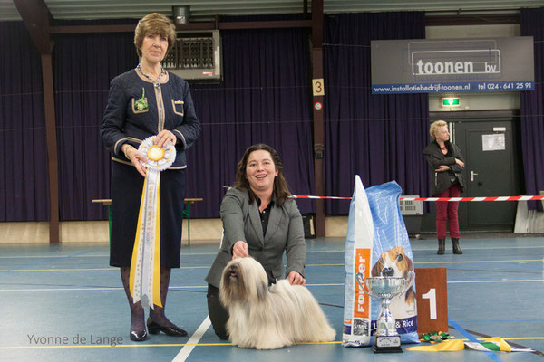 Best in Show Lhasa Apso Cocktail vd Pacific Paradise