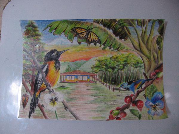http://fundaciongotitadeagua.jimdo.com/concurso-de-dibujo/