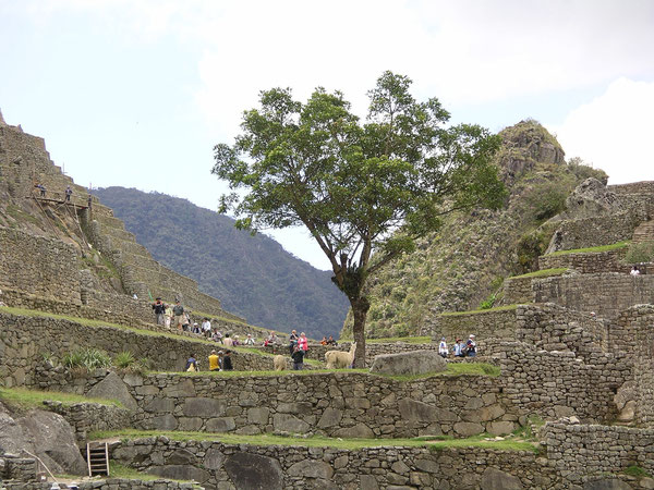 Machu Picchu besuchen - nehmen Sie Zeit mit und übernachten einmal in Aguas Calientes