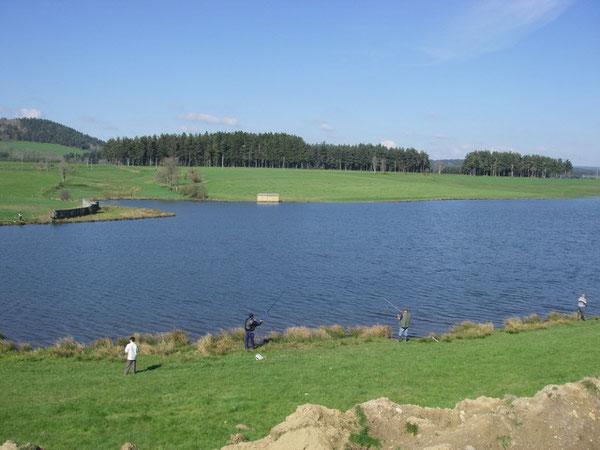 Le petit plan d'eau du Mas d'Armand.