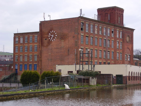 Albion Mill photographed in 2008. The mill ceased production in 1975