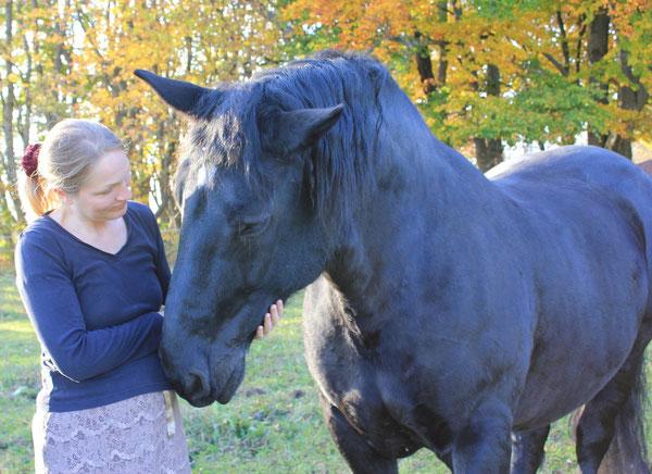 Gaby und Naomi (Stute/mare), Genkingen/Sonnenbühl, Schwäbische Alb, 20.10.2012, Canon EOS 550d. Foto: Eleonore Schindler von Wallenstern.