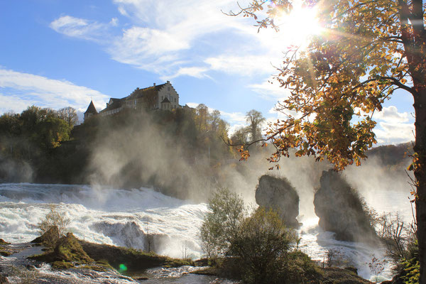Rheinfall Schaffhausen, Schweiz/Suisse, 09.11.2013, Canon EOS 550d. Foto: Eleonore Schindler von Wallenstern.
