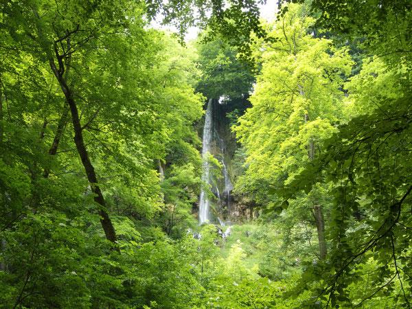 Urach Wasserfall/Waterfall Urach, Schwäbische Alb/Swabian Alps, Germany, 26.06.2008, Lumix FZ 18. Foto: Eleonore Schindler von Wallenstern.