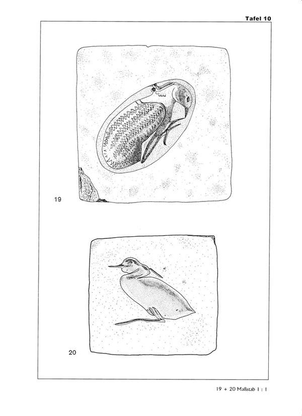 Taf. 10, aus: aus: E. Schindler von Wallenstern, Die Reiher im Alten Ägypten - Ornithologische Betrachtungen und religionsgeschichtliche Bedeutung, Dissertation, Tübingen (2002), 2011, p. 386.