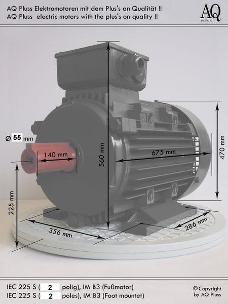 Elektromotor B3 Fußmotor, IEC 225S (nur 2 polig) diese Baugröße beinhaltet  mehreren Leistungen und Drehzahlen.