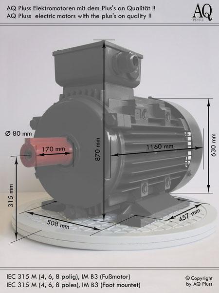 Elektromotor B3 Fußmotor, IEC 315M (4,6,8 polig) diese Baugröße beinhaltet  mehreren Leistungen und Drehzahlen.