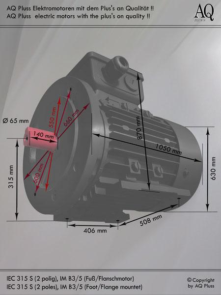 Elektromotor B3/5 Fuß/Flansch-Motor, IEC 315 S ( nur 2 polige )  diese Baugröße beinhaltet mehrere Leistungen und Drehzahlen.